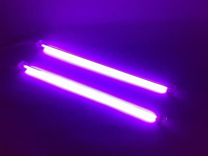 purple neons